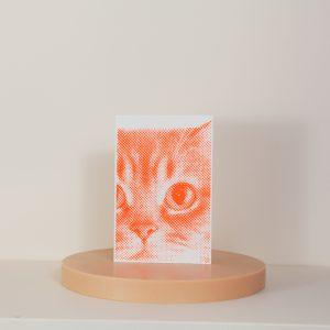 Zwölfer Karte Siebdruck Katze